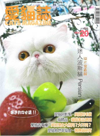 Cover of Cats Magazine- Purrinlot Breatheless- copper eye white Persian Cat