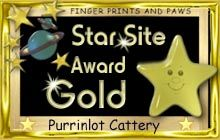 top site award